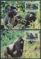 1985 WWF hegyi gorilla sor 1292-1295 Mi 4 CM