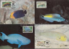 WWF halak sor 4 CM, WWF Fishes set on 4 CM
