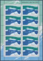 2002 Segély az árvízkárosultaknak kisív Mi 2278 C