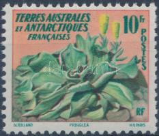 Definitive: plants, Forgalmi: növény