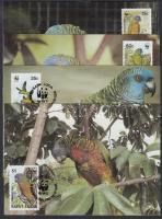 WWF Parrots set on 4 CM, WWF Papagáj sor 4 CM