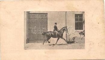 Cavalry, Lovas katona