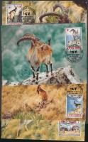 WWF Mountain goat set 4 CM, WWF hegyi kecske sor 4 CM