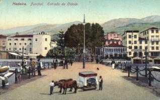 Funchal, Madeira, entrance of the city (fl)
