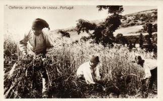 Portugese harvesters, folklore near Lisboa, Aratók Lisszabon közelében, portugál folklór