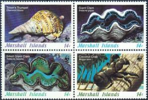 WWF Sea snails and mussels block of 4 + 4 FDC, WWF Tengeri csigák és kagylók négyestömb + 4 FDC
