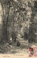 Sous les Bambous / Vietnamese folklore, bamboo forest, Bambuszerdő, vietnámi folklór