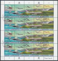 Development of aviation mini sheet, A repülés fejlődése kisív
