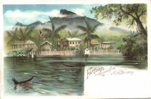 Kamerun, Factorei am Kamerunflus, vis a vis King Beldorf / German colonial postcard, litho