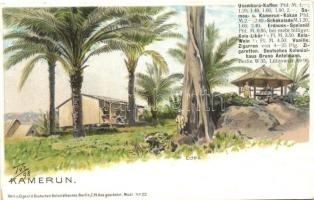 1898 Kamerun, German colonial postcard, litho
