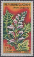 Plants, Növények