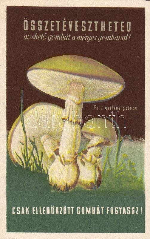 Eat only tested mushrooms' propaganda, Csak ellenőrzött gombát fogyassz! propaganda 'Szikra'