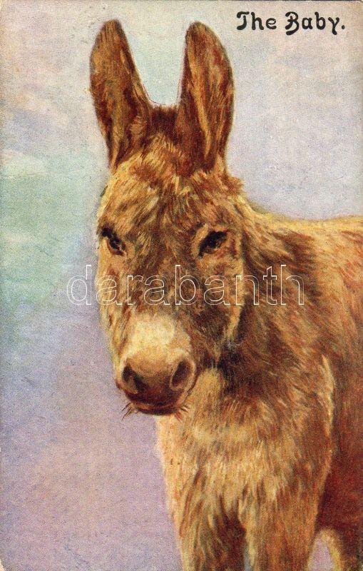 The baby, donkey, Celesque series, Szamár, Celesque series