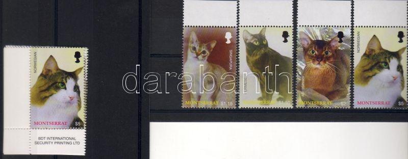 Cats corner set, Macskák ívsarki sor, Katzen Satz mit Rand