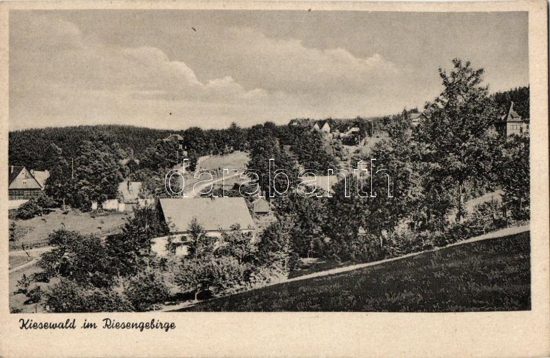 Michalowice, Kiesewald;