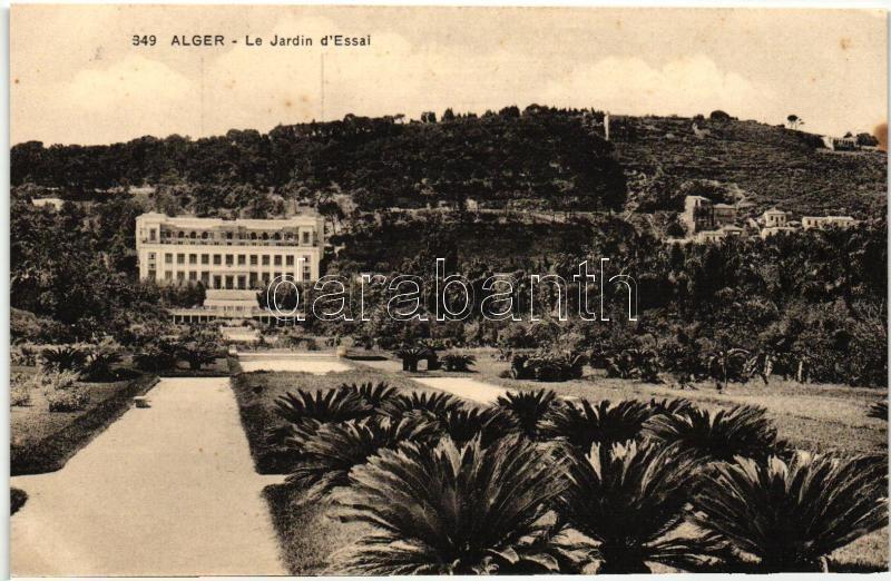 Algiers, Alger; Jardin de Essai / park