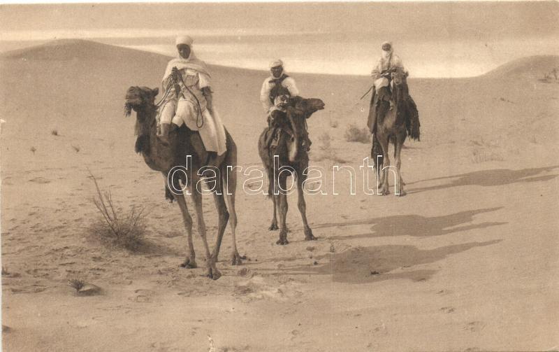 Scenes Algériennes, Touaregs dans le Saharah / Algerian folklore, Tuareg people on camels, Algériai folklór, Tuaregek tevéken a Szaharában