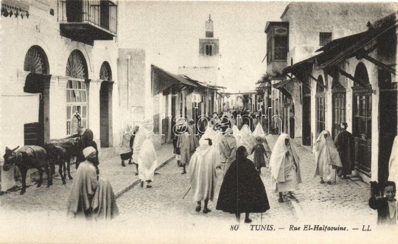 Tunis, Rue El-Halfaouine / street, folklore