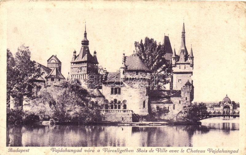 Budapest XIV. Vajdahunyad vára, Városliget