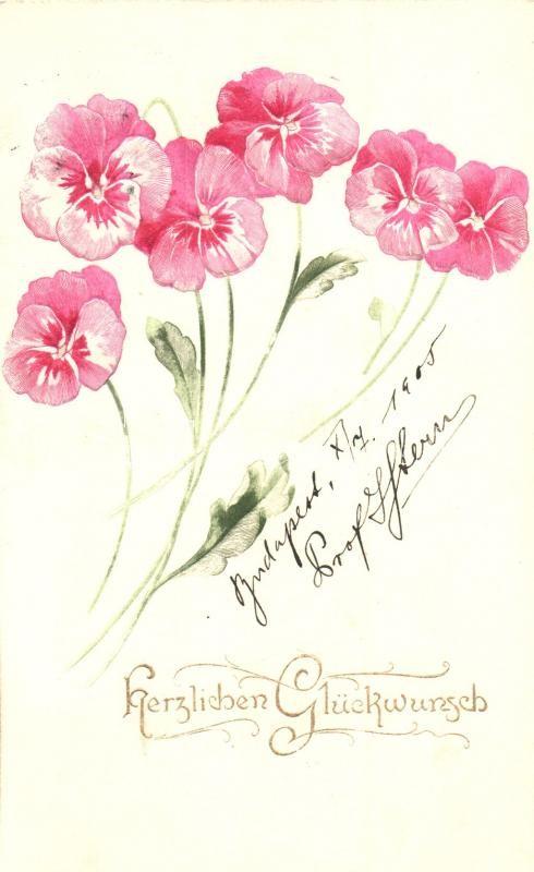 Herzlichen Glückwunsch! / Floral greeting card, Emb., Raphael Tuck & Sons Künstlerische Blümen Serie  Nr. 501B, Virágos dombornyomott üdvözlőlap, Raphael Tuck & Sons Künstlerische Blümen Serie  Nr. 501B