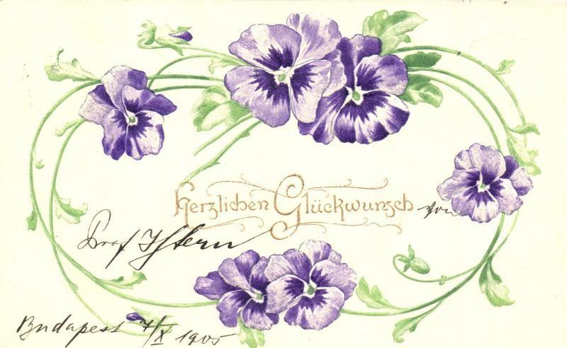 Herzlichen Glückwunsch! / Floral greeting card, Emb., Raphael Tuck & Sons Künstlerische Blümen Serie  Nr. 503B, Virágos dombornyomott üdvözlőlap, Raphael Tuck & Sons Künstlerische Blümen Serie  Nr. 503B