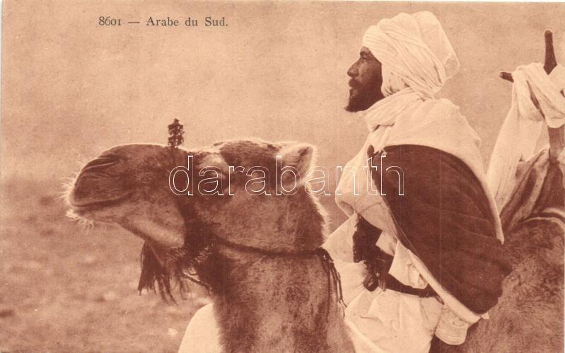 Arabe de Sud / Camel, Arabian folklore