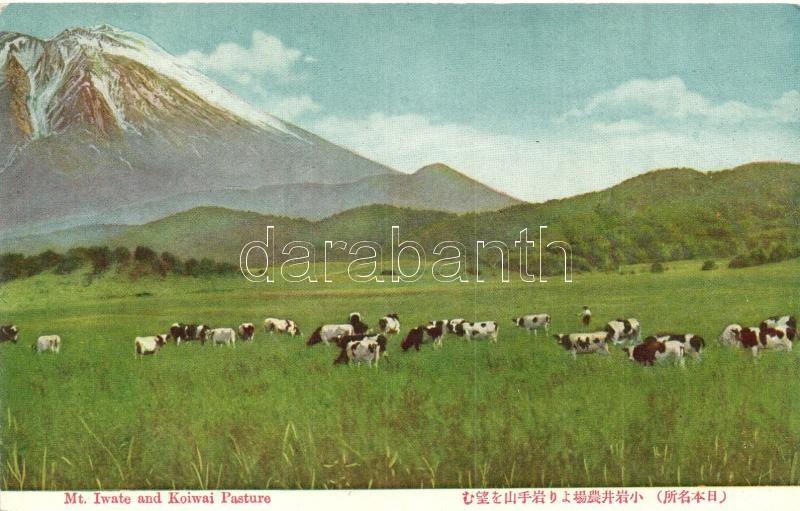 Mount Iwate and Koiwai Pasture
