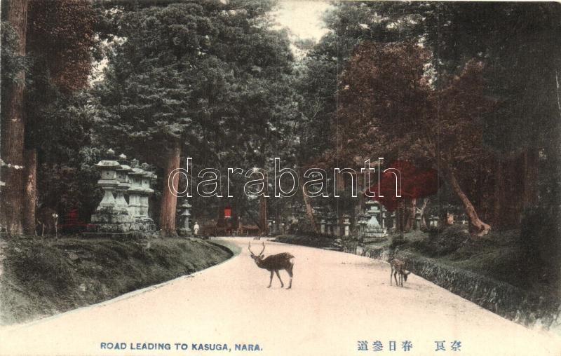 Nara, Road leading to Kasuga