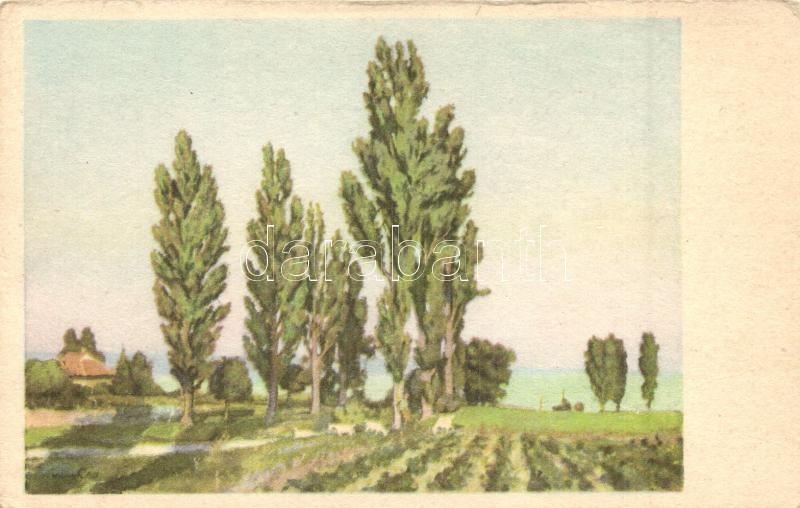 Balatoni táj, olaj s: Vidovszki Béla