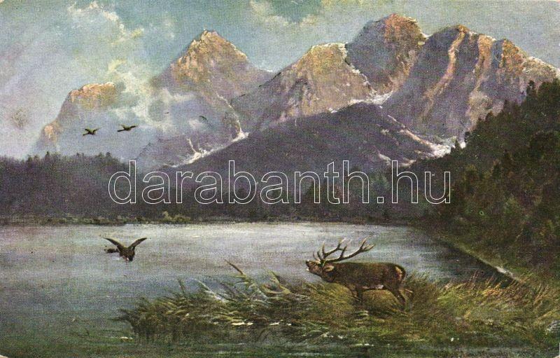 Deer, Rehn & Linzen No. 1670, Szarvas, Rehn & Linzen No. 1670