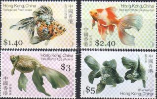 Goldfische Satz, Aranyhalak sor, Goldfish set