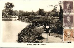 Buenos Aires, Rosedal / rose garden