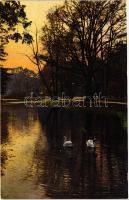 Dresden, Grosser Garten im Herbst / park; Photochromie Serie 133. Nr. 2577.