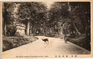 Nara, road leading to Tokasuga shrine