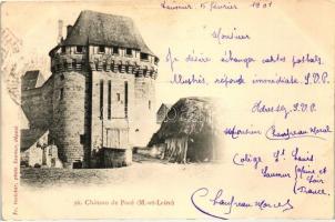 Pocé-sur-Cisse, Chateau / castle