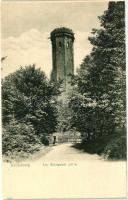 Heidelberg, Königstuhl / lookout tower