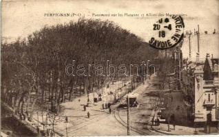 Perpignan, Platanee, Allées des Marroniers
