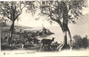 Malcesine, Lago di Garda