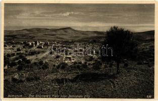 Bethlehem, The Shepherd's Field near Bethlehem