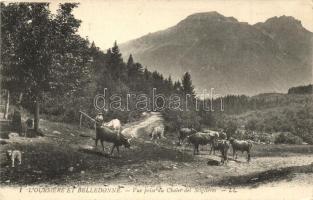 Oursiere et Belledonne, Vue prise du Chalet des Seiglieres / farm, oxen