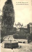 Sevilla, Cipres florido, en los jardines del Alcazar
