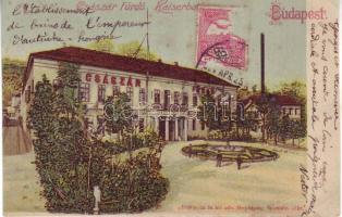 1899 Budapest II. Császár fürdő litho