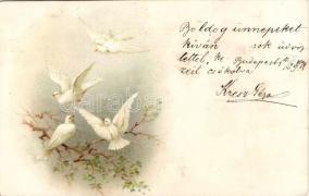 1899 Dove, white bird litho, 1899 Fehér galamb litho