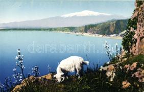 Taormina, Etna, lamb