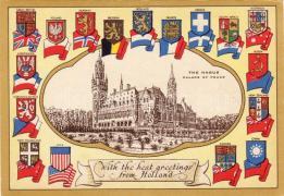 The Hague Palace of Peace, Hága Béke Palota